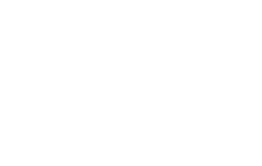 "Adoption Icon depicting a heart interconnected with a ""plus"" symbol."